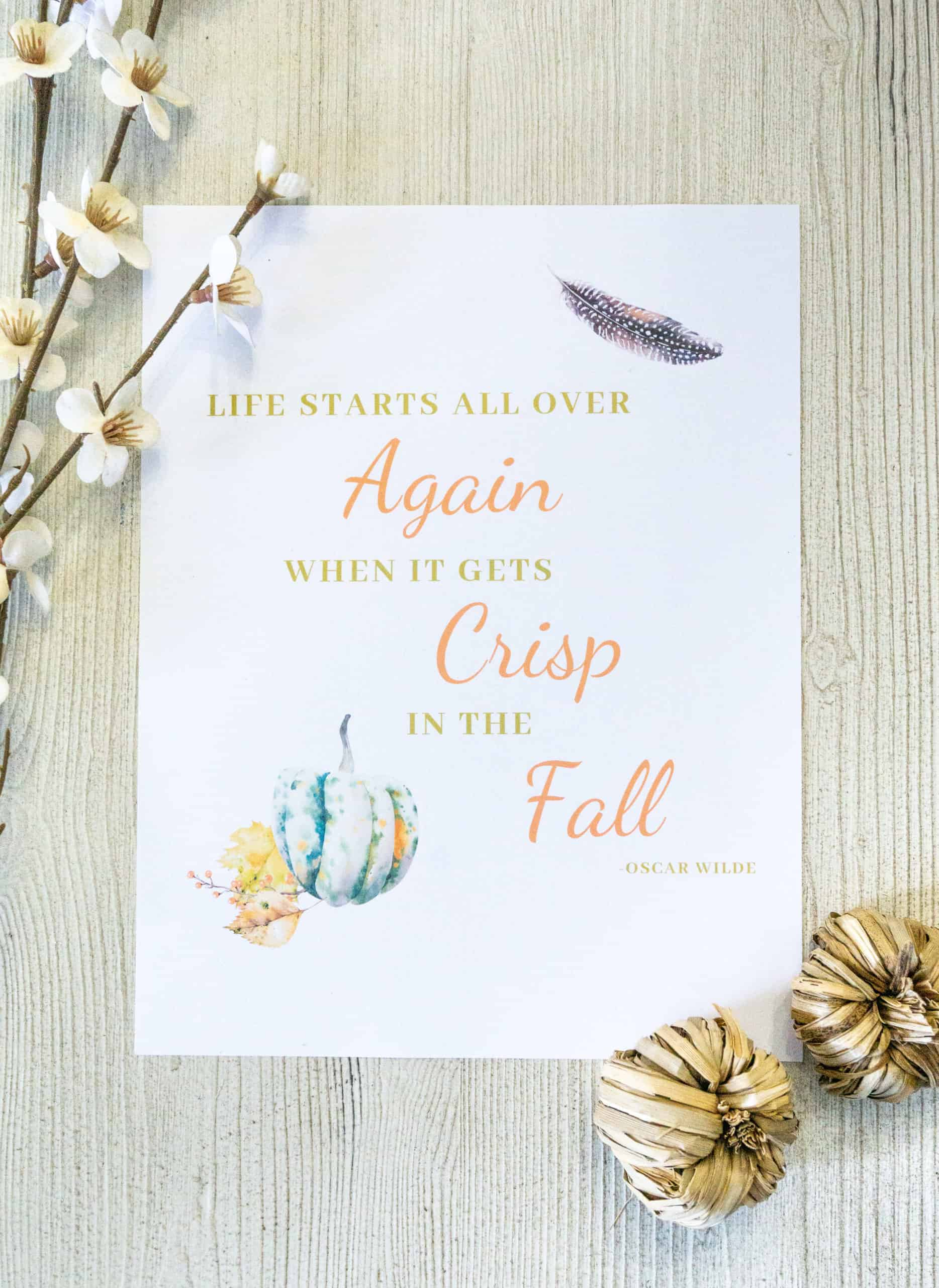 This fall printable set makes decorating for fall a snap.  Printables are an easy, and inexpensive, way to add a seasonal touch to your decor.