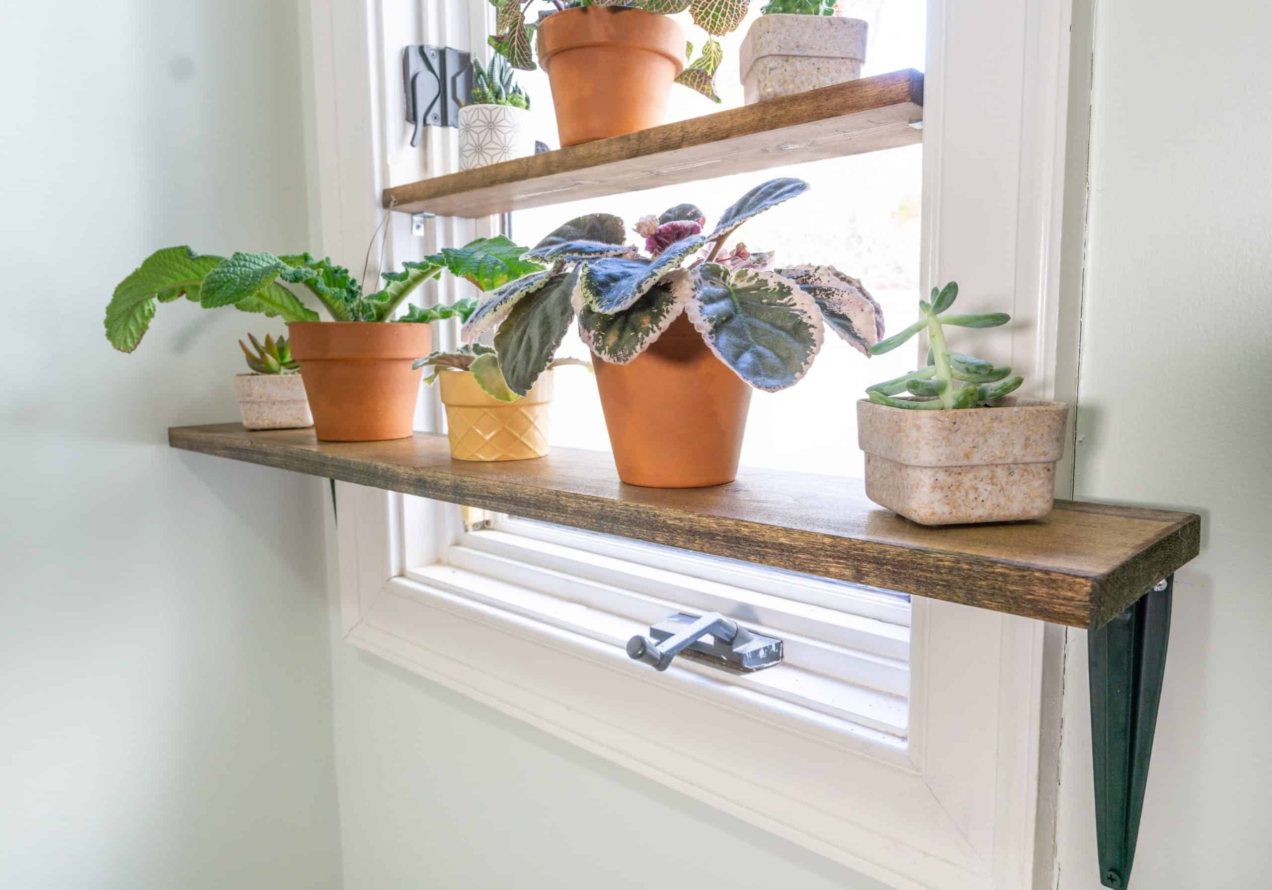 Do you have more plants than you have space for?  If so, then you need a window plant shelf!